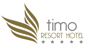 Timo Hotel